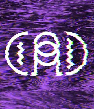 logo_distorted